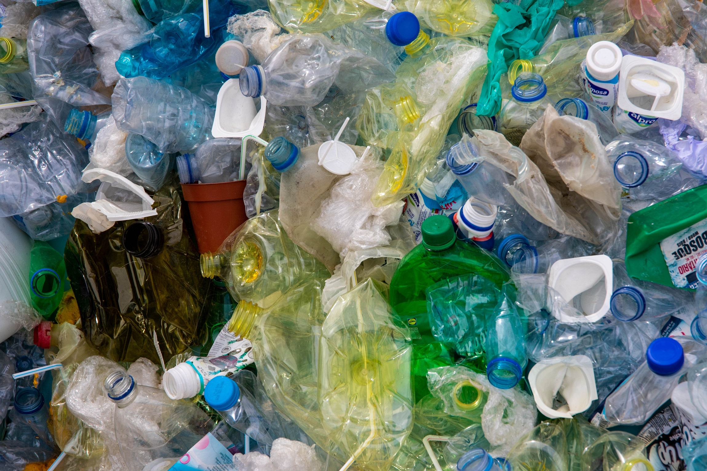 photo-of-plastic-bottles-2547565 (Magda Ehlers/Pexels)